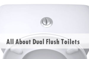 what is a dual flush toilet