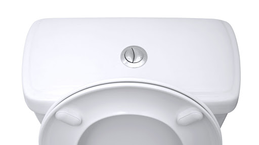 picture of a dual flush toilet