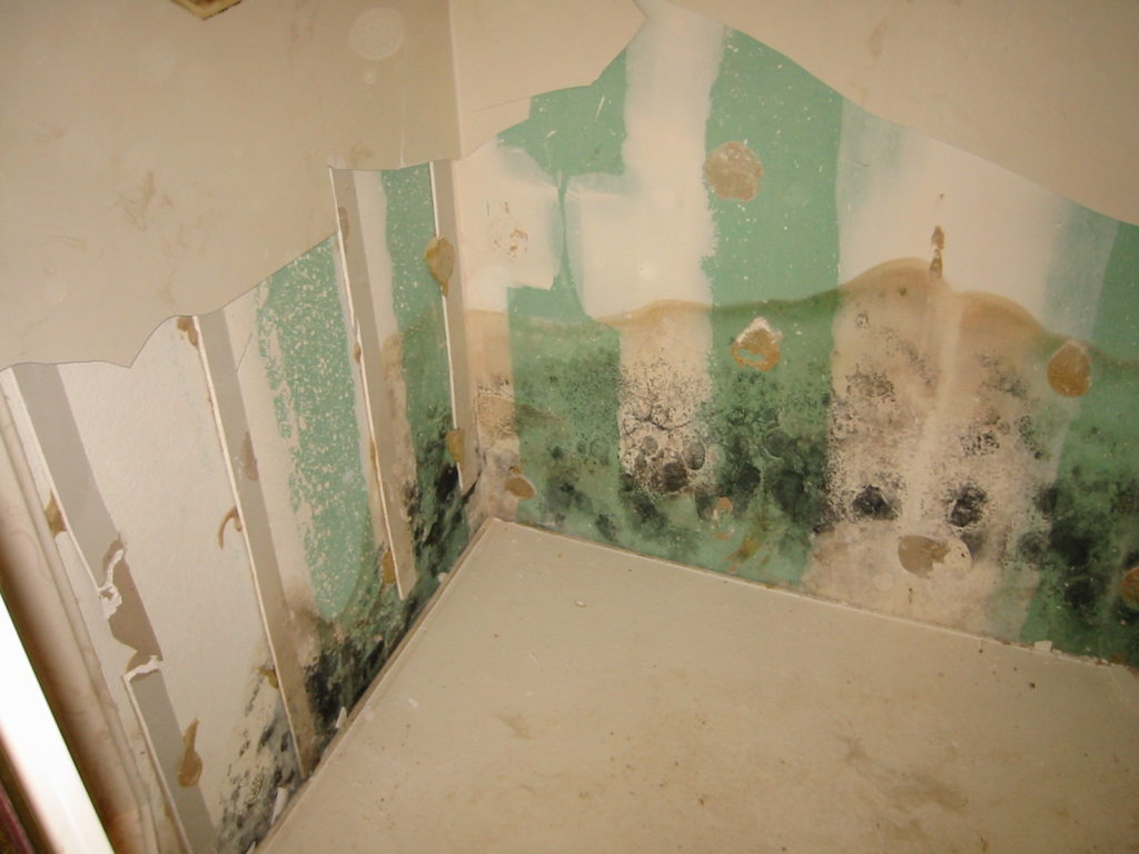 stained wall from a plumbing leak